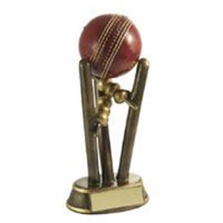 Cricket Ball Holder